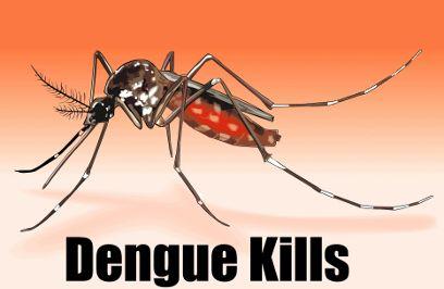 डेंगू को लेकर स्वास्थ्य विभाग ने हाईकोर्ट में बोला था झूठ, हुआ खुलासा
