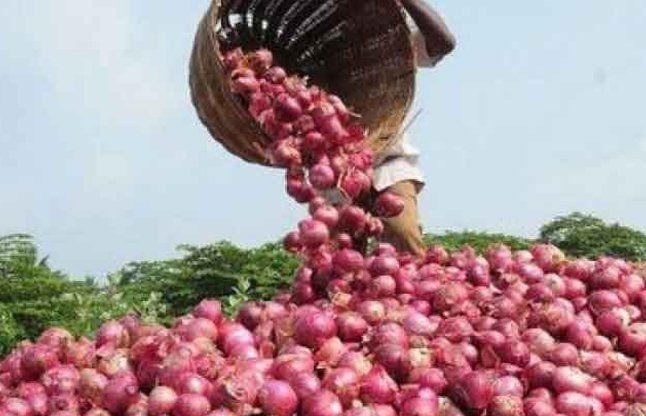 किसानों को रूलाएगा प्याज, कीमत पिछले साल की तुलना में 80% कम