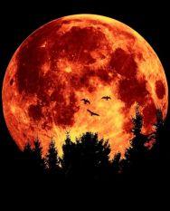 आज निकलेगा 70 साल का सबसे बड़ा चांद