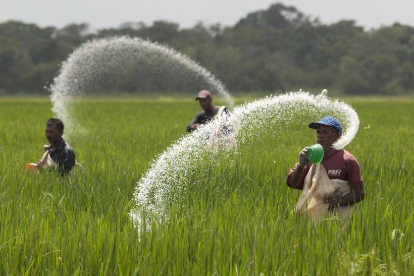 अब बिना कैश के किसान खरीदेंगे उर्वरक,इफको कर रही मदद