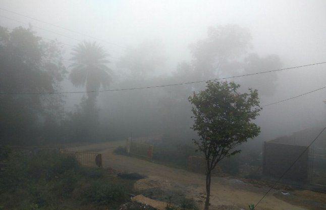MP: बिछने लगी कोहरे की चादर, 15 दिसंबर से प्रदेश में भारी ठंड के संकेत