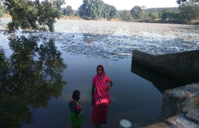 जिस तालाब से होती थी निस्तारी, सरपंच ने डलवाई मछली, ग्रामीणों का गुजारा हुआ बंद