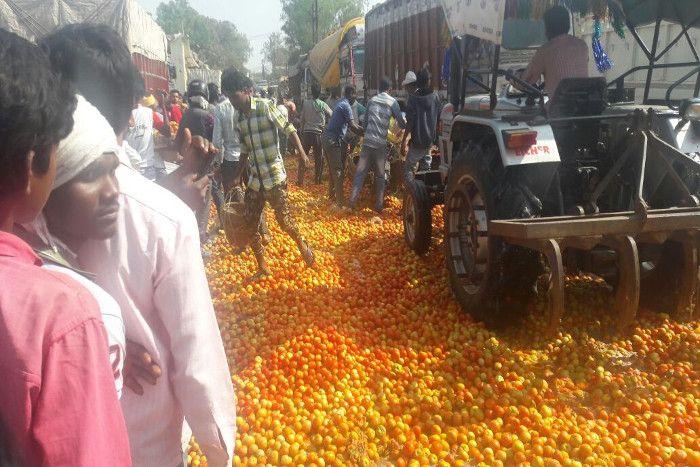 ये स्पेन काTomatina Festivalनहीं नोटबंदी से बर्बाद किसानों का गुस्सा है