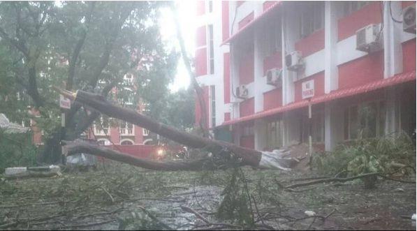 CycloneVardah: चेन्नई में 190 KMPH चली हवाएं, 7 की मौत
