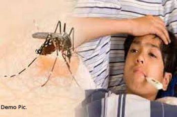 सावधान: ये मच्छर आपको कर देगा बीमार