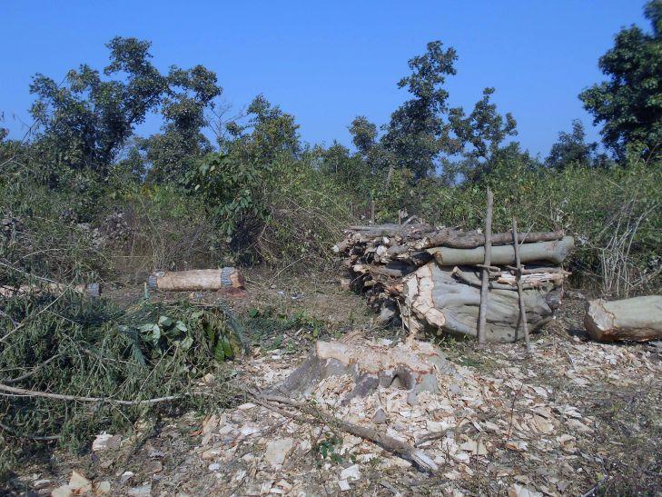 कटंगी-तिरोड़ी रेल परियोजना का काम शुरू