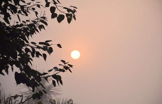 बढ़ेगी सर्दी और कम होगा तापमान, रात के तापमान में गिरावट का अनुमान