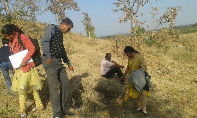 मनरेगा घोटाला : रोज सिंचाई पर खर्च किए 1500 रुपए, फिर भी सूख गए पौधे
