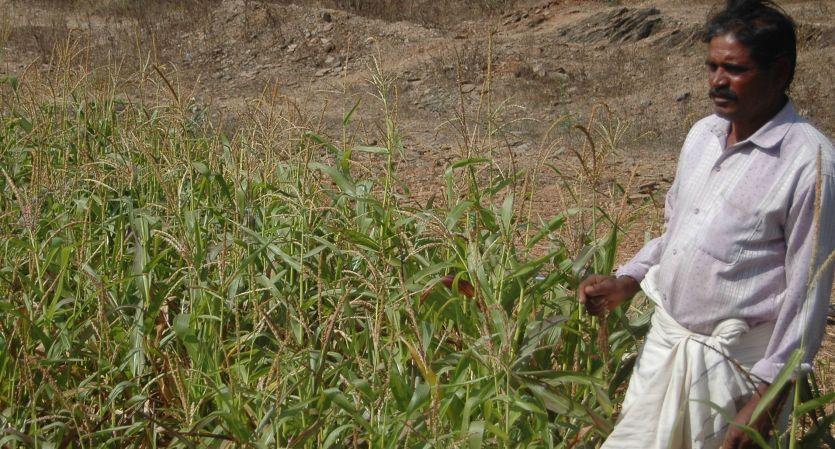 किसानों को अस्थायी कनेक्शन दिया, बिजली नहीं