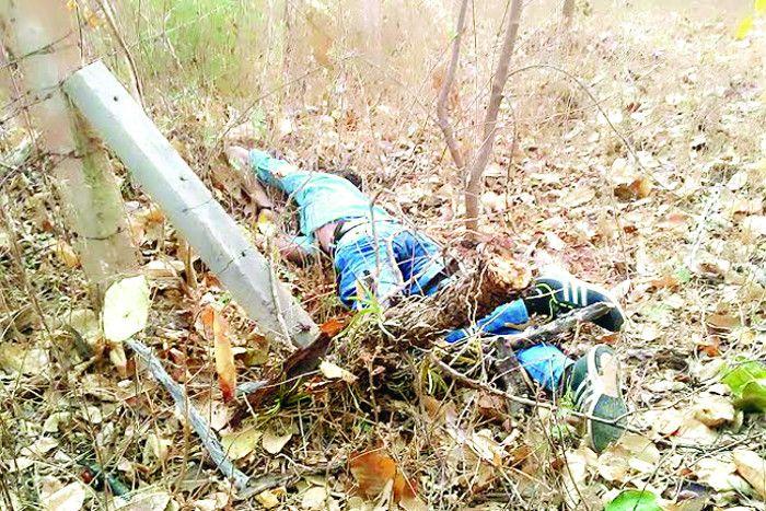 बेकाबू बाइक के पेड़ से टकराने पर युवक की मौत, पूरी रात सड़क पर पड़ी रही लाश