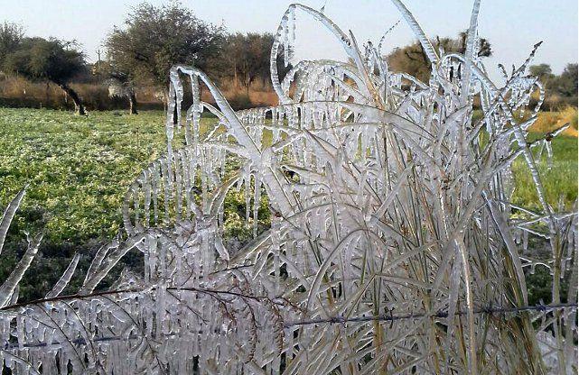 शीत लहर के कारण इंदौर में आंगनवाडिय़ों और स्कूलों का टाइम बदला, यह है नया समय