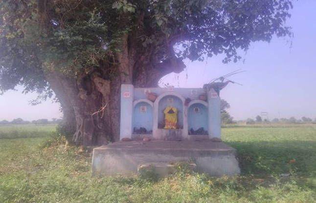 देवी की स्वयं-भू प्रतिमा, इसके नीचे छिपा है खजाने का रहस्य