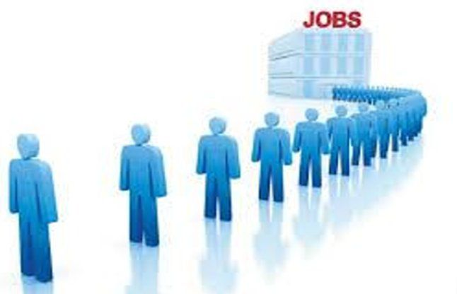 रोजगार मेले में आईं 70 से अधिक कम्पनियां, युवाओं को मिलेगा रोजगार