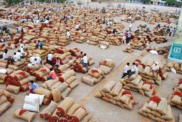 पंडरा बाजार समिति में व्यवसायियों से लाखों की उगाही का मामला उजागर