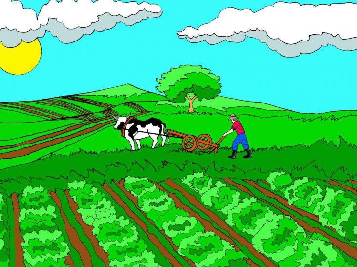 खरसावा में खुलेगा किसान सिंगल विंडो सेंटर, भवन बनकर तैयार