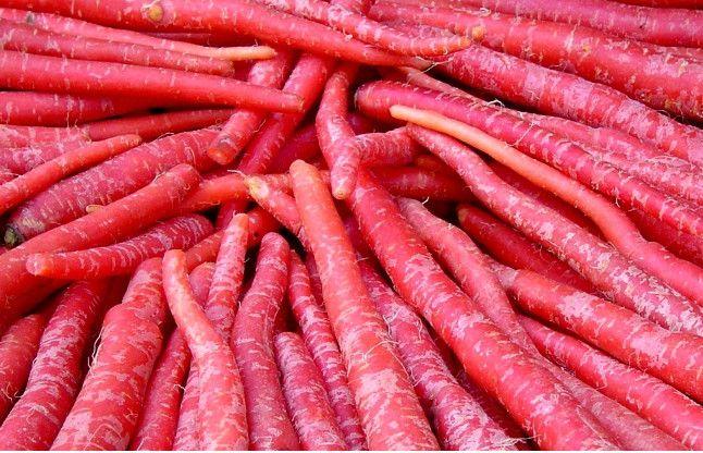 विटामिन से भरपूर गाजरकीयेडिश, मर्दाना ताकत के लिए है रामबाण, ऐसे बनाएं...