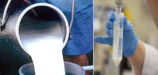अधिकारियों ने एक सप्ताह से नहीं लिए दूध के सैम्पल, मिलावट बढ़ी