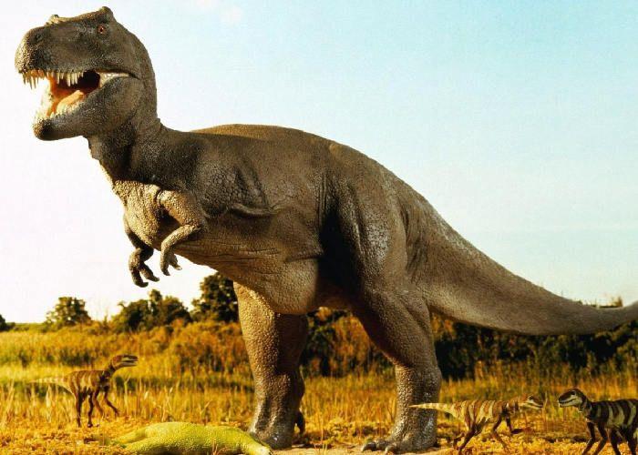 यहां मौजूद है 7 करोड़ साल पुराना डायनासोर का अंडा, मिलीं ये प्रजातियां