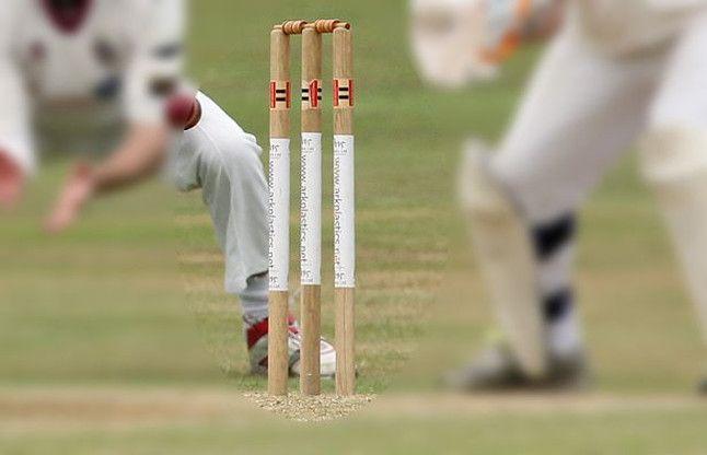 BJP नेताओं ने क्रिकेट मैदान पर दिखाया दम, MLA की गेंद पर मंत्री ने जड़ा चौका
