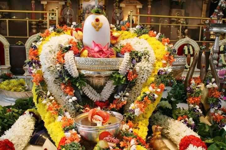 भोलेनाथ को ये फूल चढ़ाने से लग सकता है पाप, इस विधि से प्रसन्न होते हैं शिव