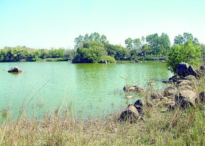 ठाकुरताल की पहाड़ी पर बनेगा पार्क, होंगे जैव विविधता के दर्शन