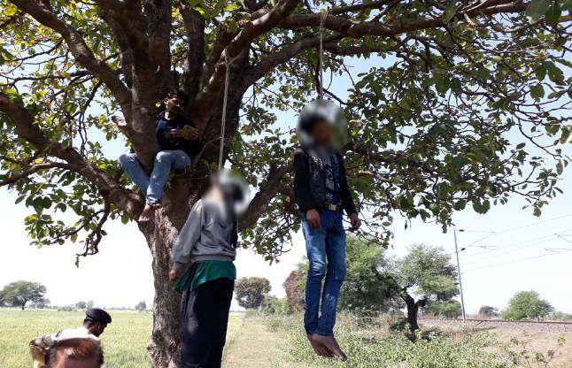 खेत में लगे पेड़ से ऐसे लटके मिले दो प्रेमी, जूतों को देखतेही उलझी पुलिस