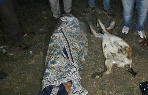 बकरी की मौत का सदमा नहीं कर सका बर्दास्त, SECL पर कर दिया गैरइरादतन हत्या का केस