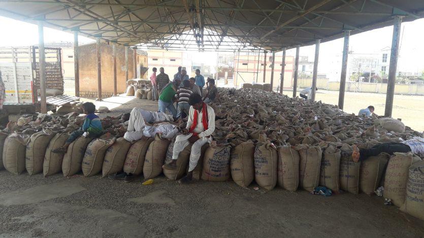 मंडी की अव्यवस्थाओं से समर्र्थन केन्द्रों पर पहुंचने लगे किसान