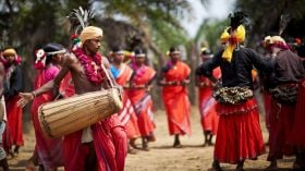 Image result for bhil tribe of mp