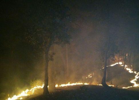 सेहतगंज के पहाड़ों पर धधकी आग