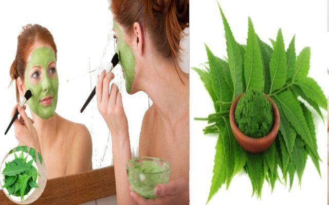 त्वचा और बालों के लिए लाभदायक हैं नीम की पत्तियां, जानिए कैसे
