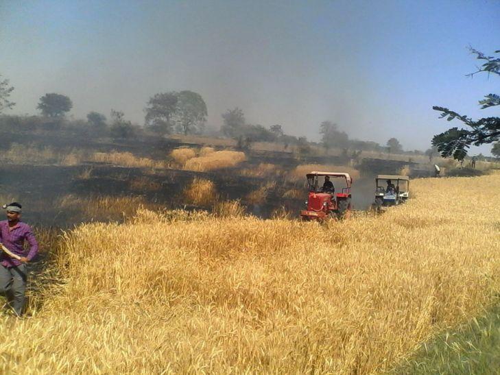आग से तीन किसानों की 20 बीघा फसल जली