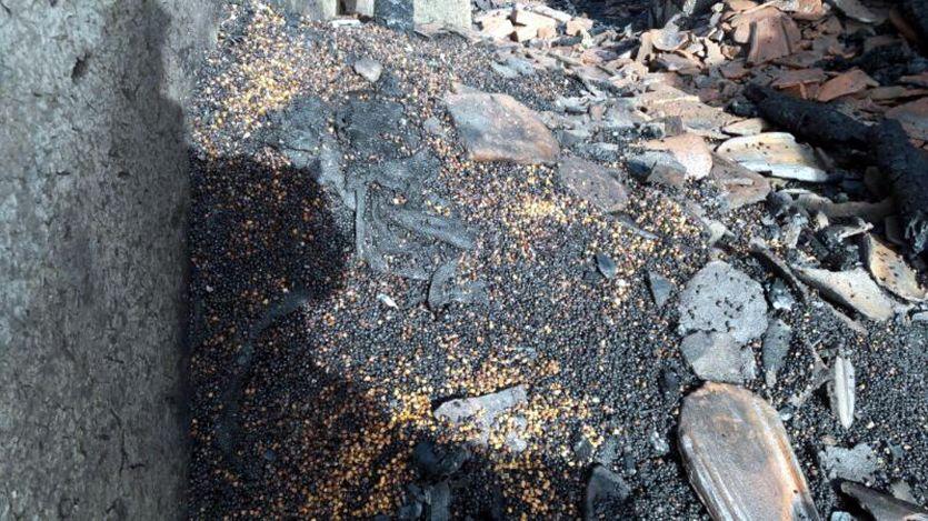 जिले में चार स्थानों पर आग ने मचाया तांडव
