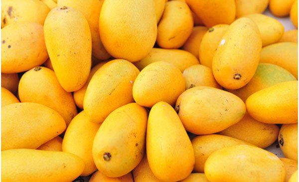 फलों का राजा आम हुआ खतरनाक, पक रहा चीन के केमिकल से