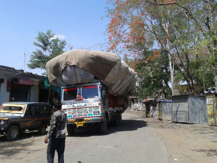 अवैध रास्तों से राजस्थान जा रहा जिले का पशुआहार