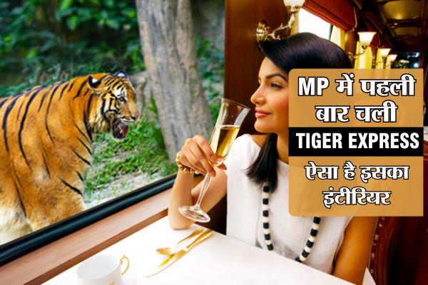 MP में दोबारा आएगी देश की पहली TIGER EXPRESS, ऐसा है इसका इंटीरियर