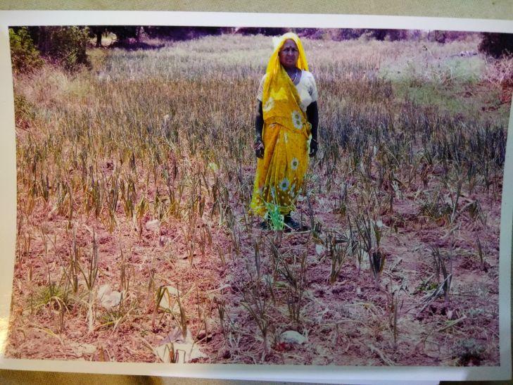 किसानों के खेत से डीपी उठा ले गए दबंग