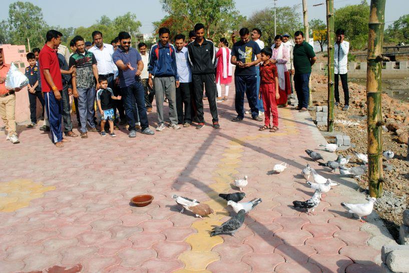 सीहोर में बना पीहू-पीहू हब, शहरवासी अपने हाथ से खिला सकंेगे पक्षियों को दाना-पानी