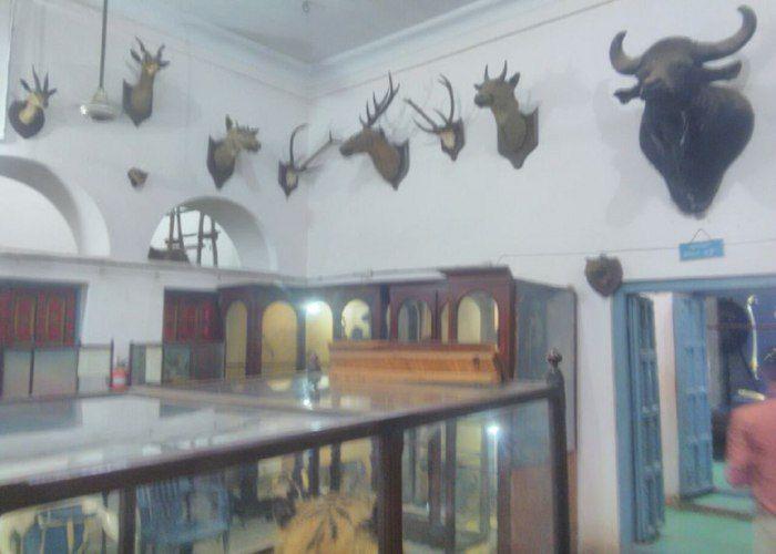 नया रूप लेगा नगर निगम संग्रहालय