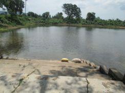 महापौर व पार्षद मद से संवरेंगे शहर के तालाब, राज्य सरकार ने जनप्रतिनिधियों की निधि तालाब में खर्च करने दी अनुमति