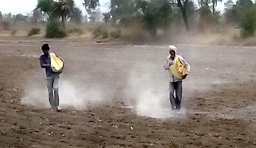 मिट्टी में निम्न स्तर पर पहुंचे कार्बनिक पदार्थ, समय रहते ध्यान नहीं दिया तो खेत हो जाएंगे बंजर