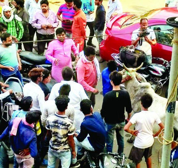 केरल की घटना :जबरन लेकर आए गाय और लोगों में Selfie लेने की मची होड़