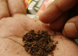 पंजाब सरकार के आदेश, बच्चों को तंबाकू बेचा तो होगी कार्रवाई