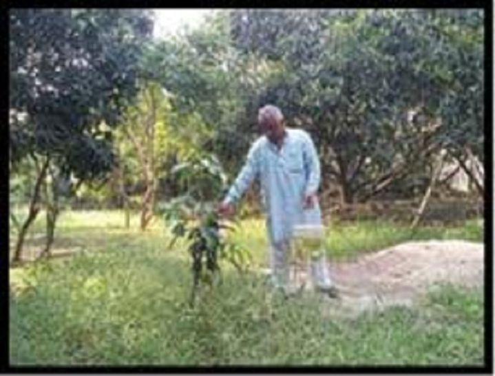बागवानी के लिए छोड़ी नौकरी, आज किसानों के लिए प्रेरणास्त्रोत बने सुधाकर