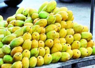 Mango : 'आमÓ नहीं हुए दाम, अब भी महंगा बिक रहा दशहरी