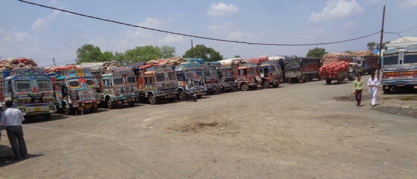 शहडोल में जगह नहीं, अब हरपालपुर जाएगी जिले की प्याज