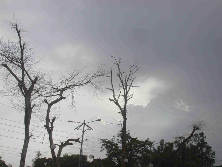 प्री-मानसून की बारिश से किसान पहुंचा खेतों में,बोवनी की तैयारी शुरू