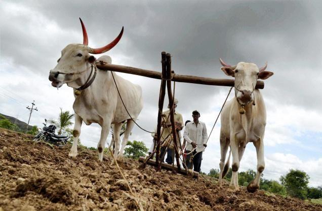 किसानों का 1 लाख रुपए तक का कर्ज माफ करेगी सरकार