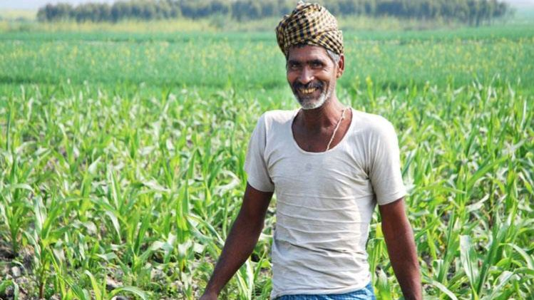कृषि ऋणों में दो लाख रुपए से कम लोन लेने वाले 86% खाताधारक