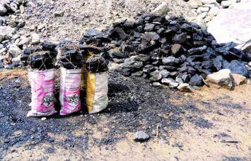 चोरी छिपे झाडिय़ो के बीच रखी कोयले की बड़ी खेप को पुलिस ने पकड़ा, इतने टन कोयले का था भण्डारण